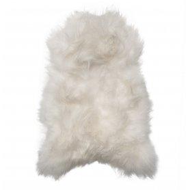 Valkoinen lampaantalja, Icelandic