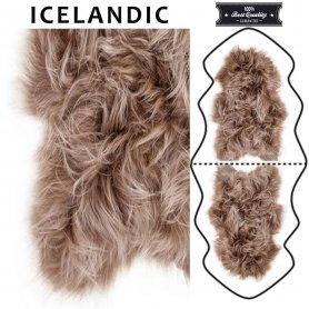 Toffee lampaantalja, Icelandic x2, erikoispitkä, pitkä karva